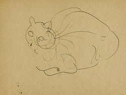 (Untitled--Cat)