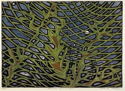 Rockweed, Kelp and Net