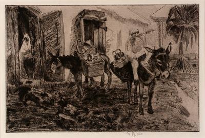 Boy and Donkeys