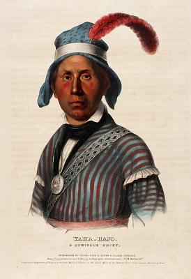 Yaha-hajo. A Seminole Chief.