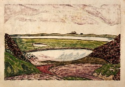 Tide Marshes