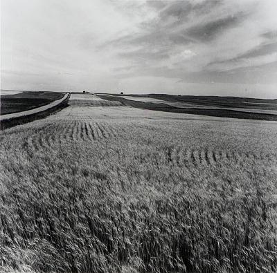Kiowa County, from the Kansas Documentary Survey Project