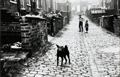 Leeds, England (alleyway between rowhouses, boys playing, dog)