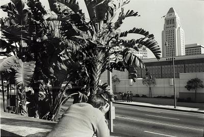 Untitled (Los Angeles)