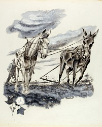 Arkansas, from the United States Series