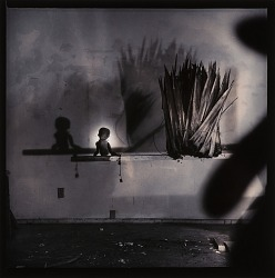 Untitled (Doll and Leaf Fronds on Horizontal Board)