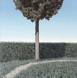 Hedge and Cypress