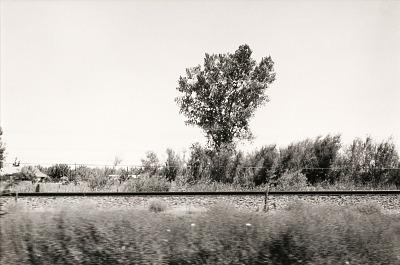 Autolandscape, California