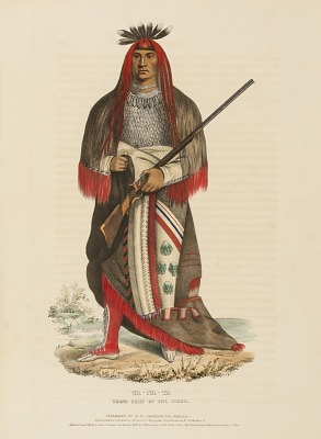WA-NA-TA. GRAND CHIEF OF THE SIOUX, from History of the Indian Tribes of North America