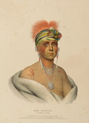 MON-CHONSIA. A KANSAS CHIEF., from History of the Indian Tribes of North America