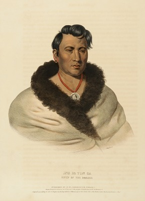 ONG PA TON GA. CHIEF OF THE OMAHAS., from History of the Indian Tribes of North America