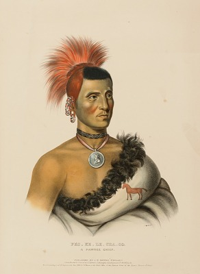 PES-KE-LE-CHA-CO, A PAWNEE CHIEF., from History of the Indian Tribes of North America