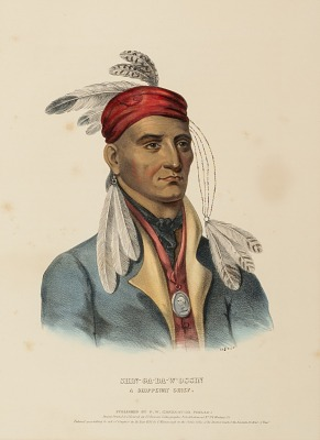 SHIN-GA-BA-W'OSSIN. A CHIPPEWAY CHIEF., from History of the Indian Tribes of North America