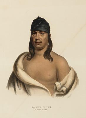 PA-SHE-PA-HAW. A SAUK CHIEF., from History of the Indian Tribes of North America