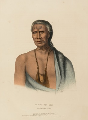 LAP-PA-WIN-SOE. A DELAWARE CHIEF., from History of the Indian Tribes of North America
