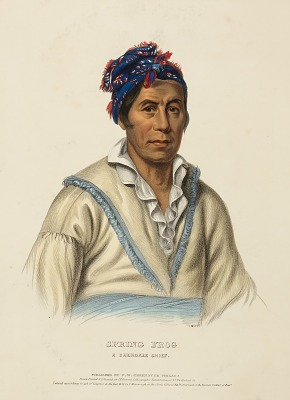 SPRING FROG. A CHEROKEE CHIEF, from History of the Indian Tribes of North America