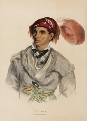 Tah-Chee (Dutch), A Cherokee Chief, from History of the Indian Tribes of North America