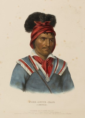 FOKE-LUSTE-HAJO. A SEMINOLE., from History of the Indian Tribes of North America
