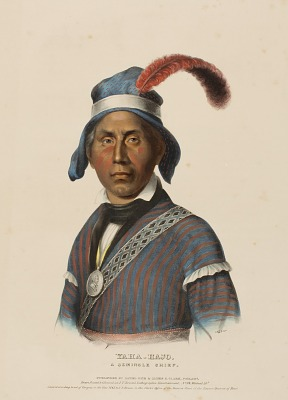 YAHA-HAJO. A SEMINOLE CHIEF., from History of the Indian Tribes of North America
