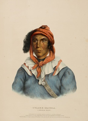 TULCEE-MATHLA. A SEMINOLE CHIEF., from History of the Indian Tribesof North America
