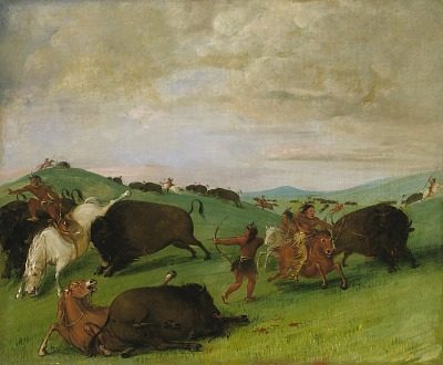 Buffalo Chase, Bulls Making Battle with Men and Horses