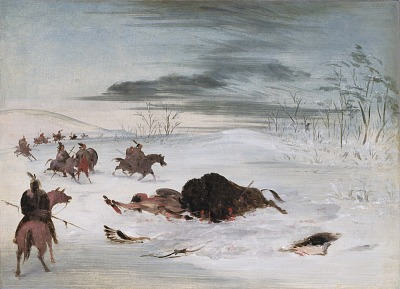 Dying Buffalo Bull in a Snowdrift
