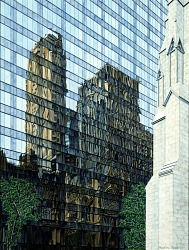 St. Patrick's Cathedral Reflections