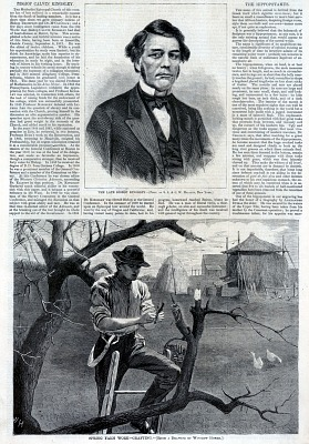 Spring Farm Work--Grafting, from Harper's Weekly, April 30, 1870