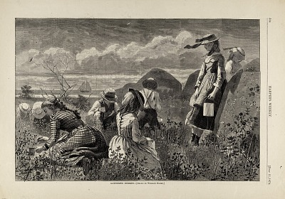 Gathering Berries, from Harper's Weekly, July 11, 1874
