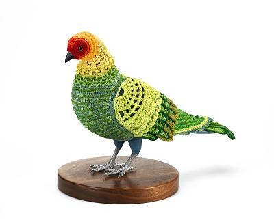 Biodiversity Reclamation Suit: Carolina Parakeet