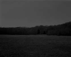 Untitled #9 (The Field) from the series Night Coming Tenderly, Black