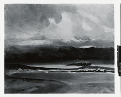 The West Coast of Ireland [painting] / (photographed by Peter A. Juley & Son)