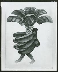 Banana [drawing] / (photographed by Peter A. Juley & Son)