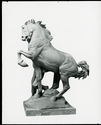 Youth Taming the Wild [sculpture] / (photographed by Peter A. Juley & Son)