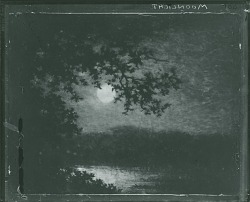 Moonlight [painting] / (photographed by Peter A. Juley & Son)
