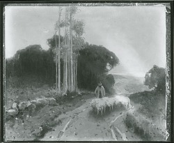 Sheep and Evening [painting] / (photographed by Peter A. Juley & Son)