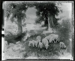 Sheep in Oregon [painting] / (photographed by Peter A. Juley & Son)