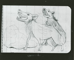 Preliminary Drawing for Animales (Animals) [drawing] / (photographed by Peter A. Juley & Son)