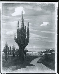 The Vetera, Arizona [painting] / (photographed by Peter A. Juley & Son)
