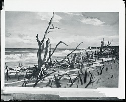 Coastal Landscape [painting] / (photographed by Peter A. Juley & Son)
