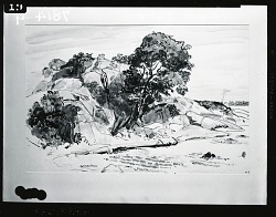 Landscape [drawing] / (photographed by Peter A. Juley & Son)