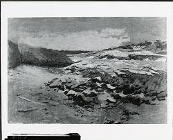 Coastal Landscape [art work] / (photographed by Peter A. Juley & Son)
