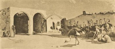 An Ostrich Farm [photomechanical print]