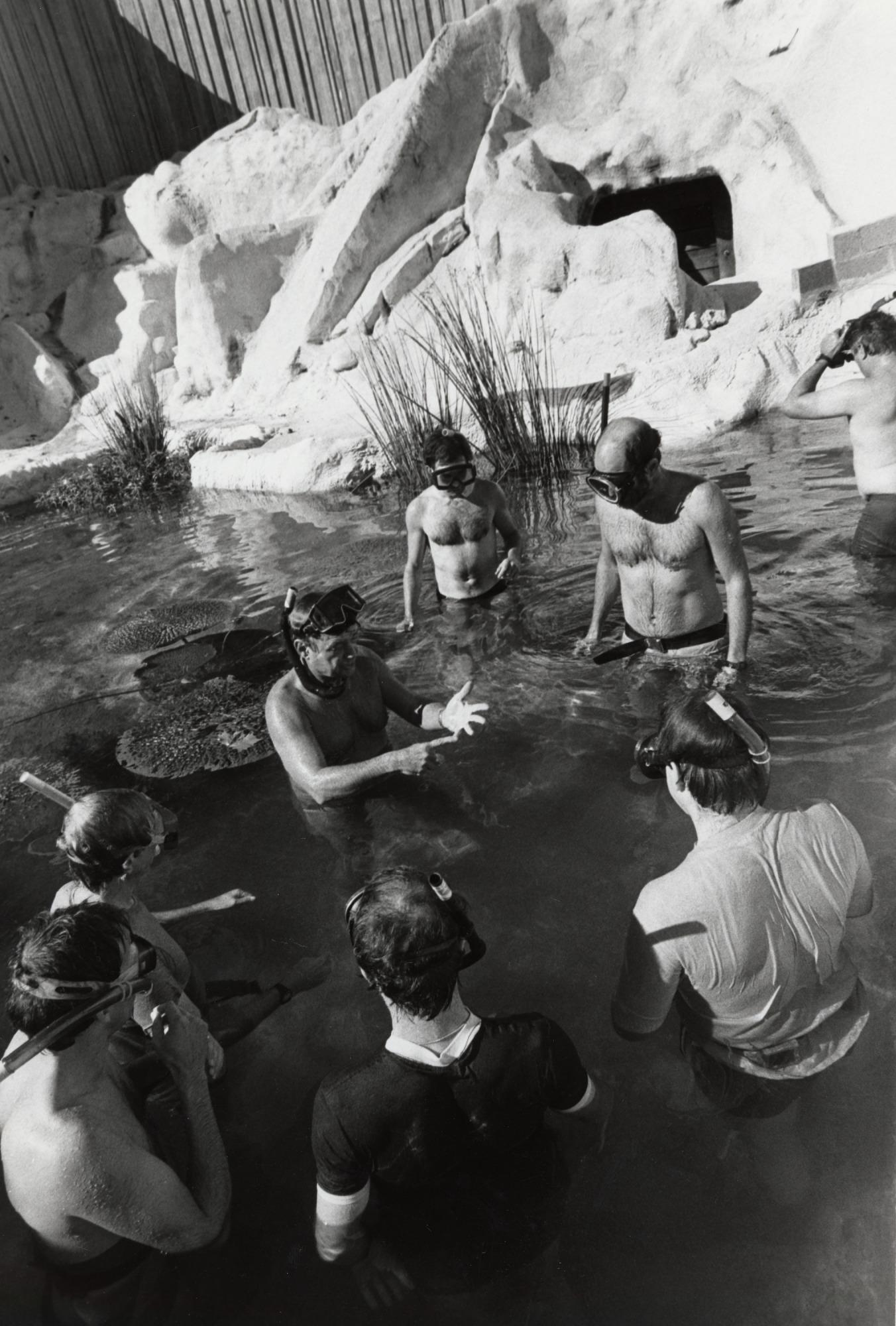 NZP Diving Class in Old Polar Bear Pool