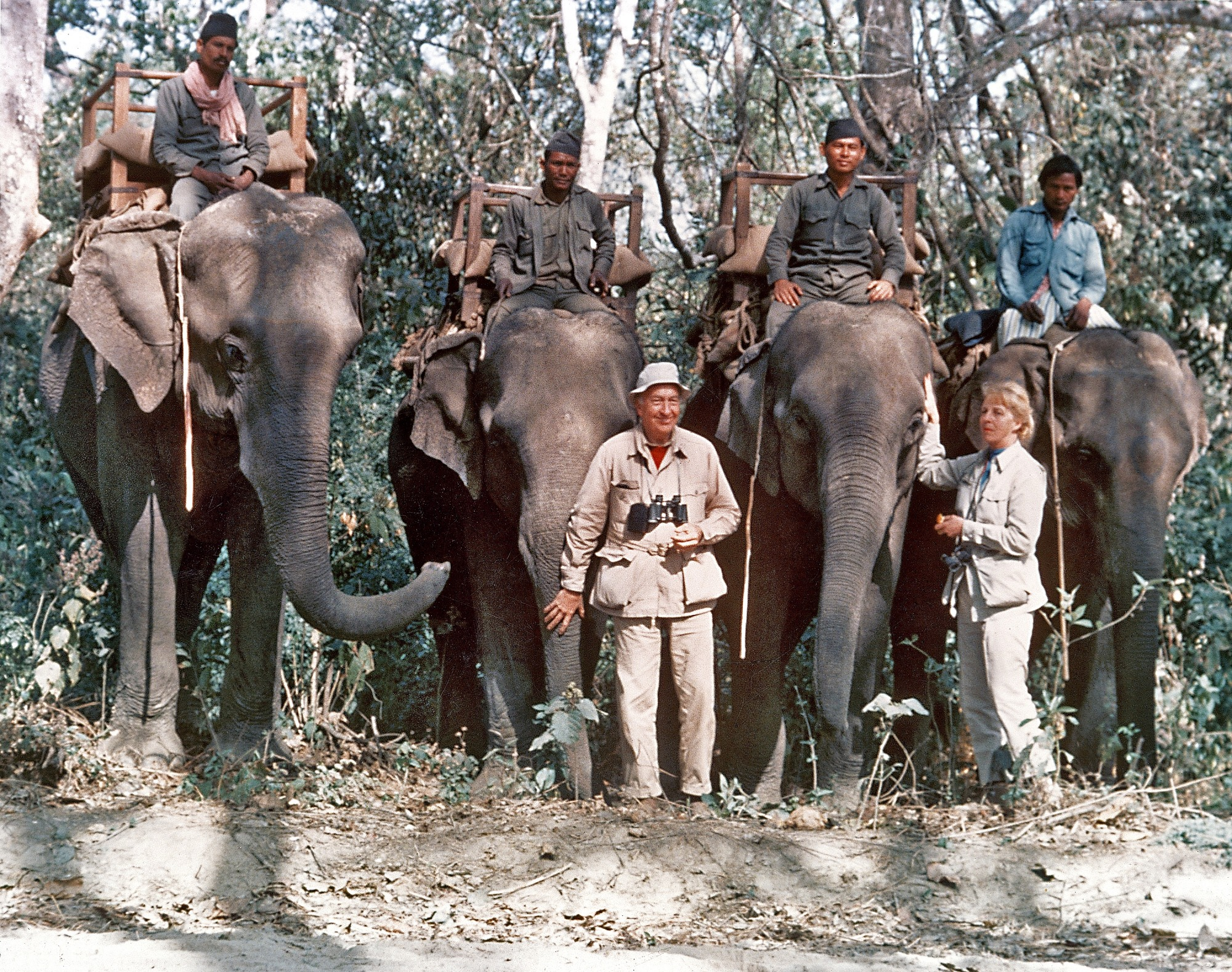 The Ripleys with Elephants in India