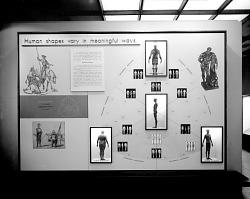 Human Biology Exhibit
