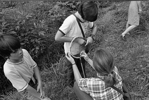 Image of Insect Zoo Specimen Gathering