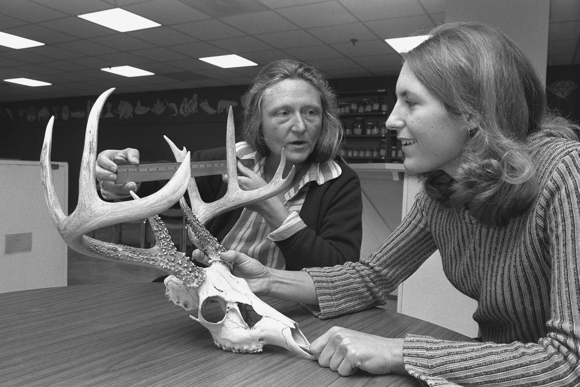 Irene Magyar and Tracy Siani Measure Skull