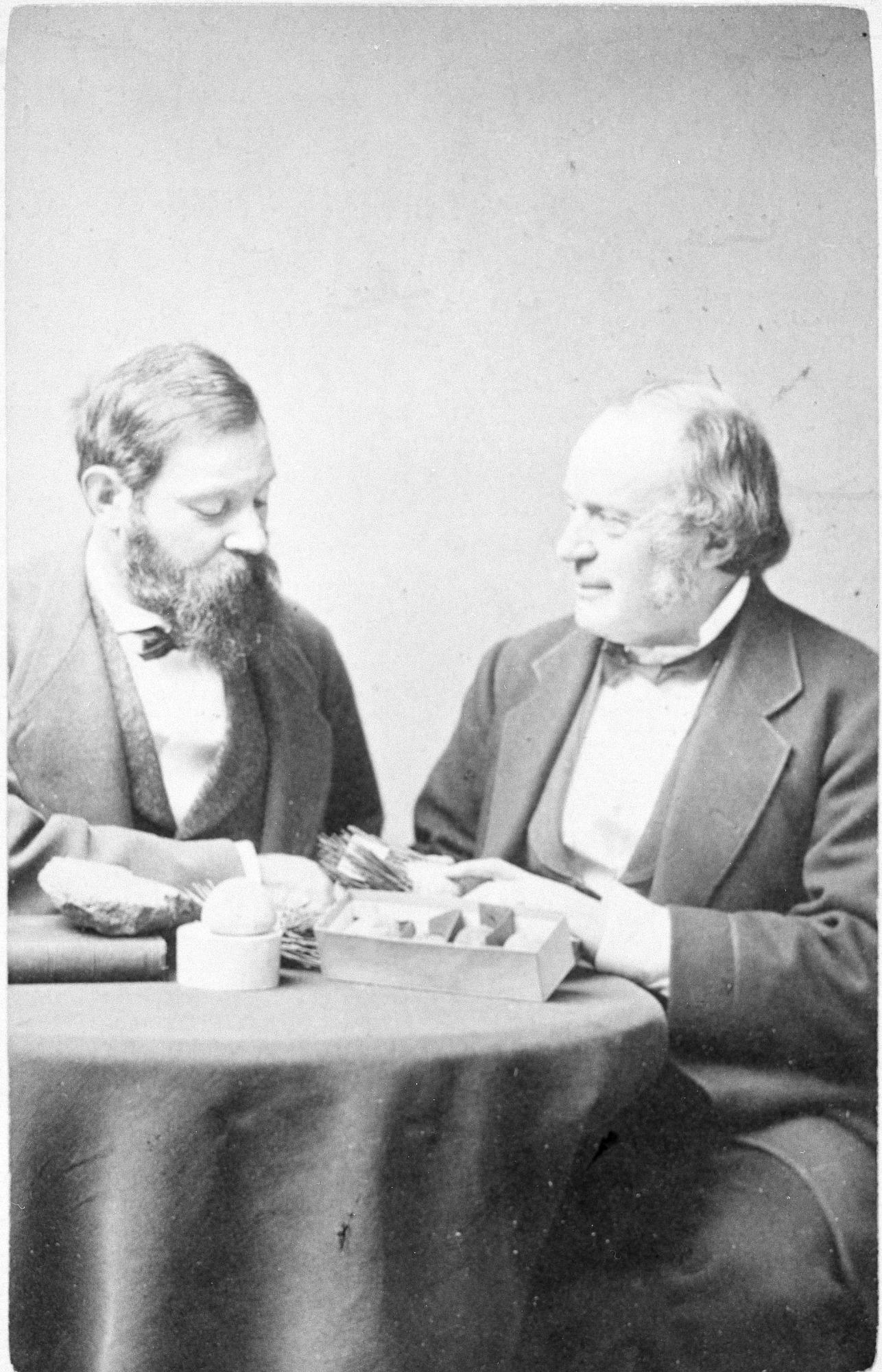 Jean Louis Agassiz & Louis de Pourtales