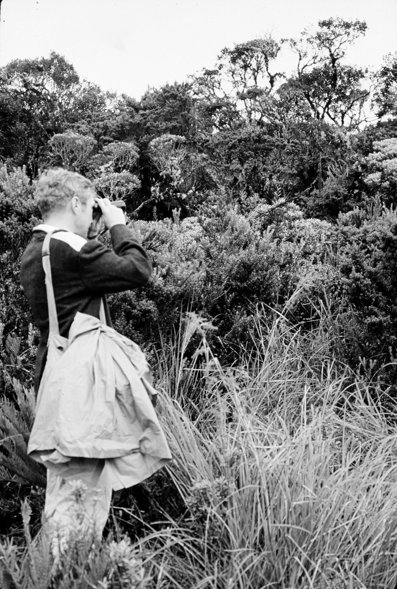 M. H. Moynihan in field in Colombia